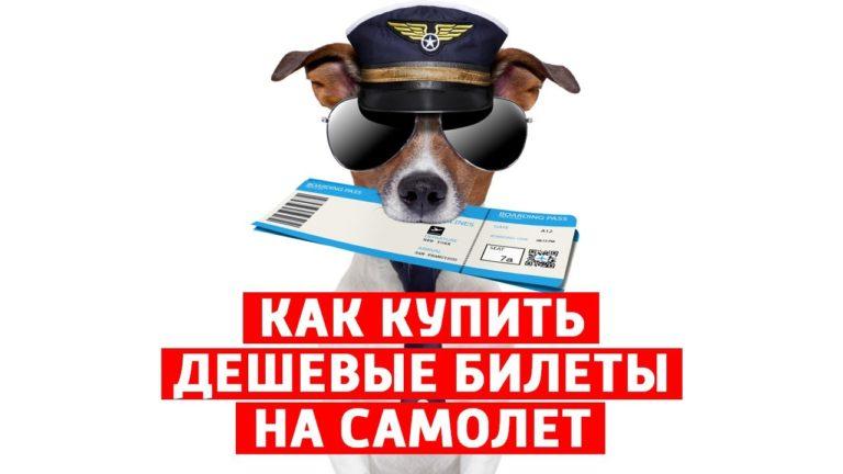 Пора улетать: не забудьте купить билет на самолёт.